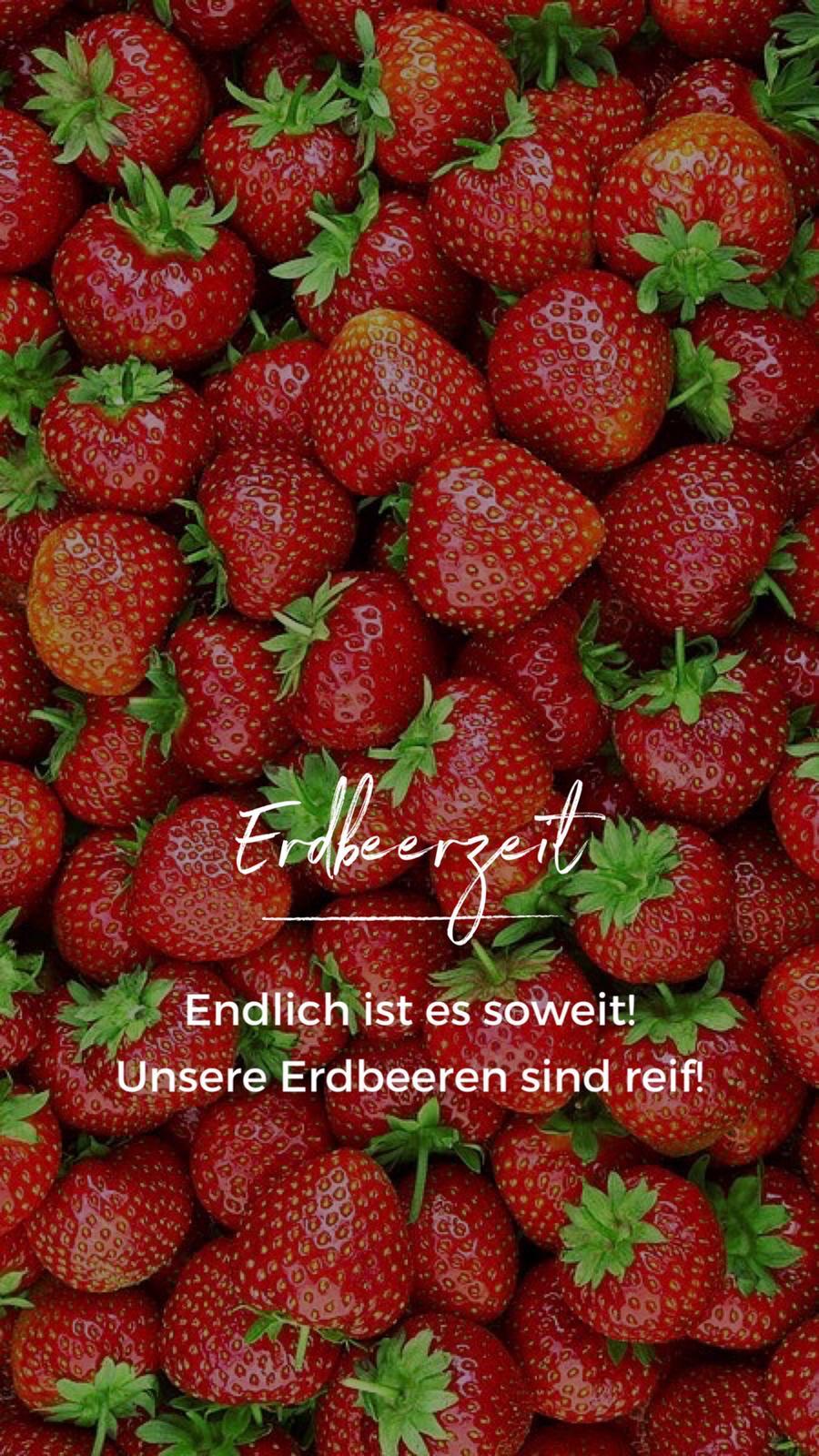 (c) Eichenberger-obst.ch